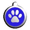 Adopción gatos machos