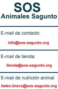 Protectora de animales en Sagunto, Valencia - Perros en adopción