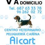 aicart-centro-veterinario-peluqueria-canina