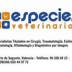 especies-veterinarios